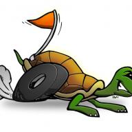 tartarugaaspirantelepre